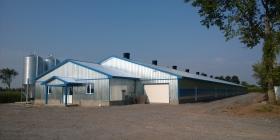Vleeskuikenstal in Québec, Canada